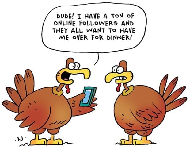 Thanksgiving joke with 2 turkeys